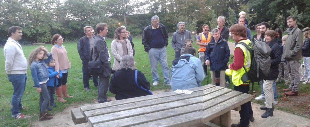 Bat Walk Report 2014