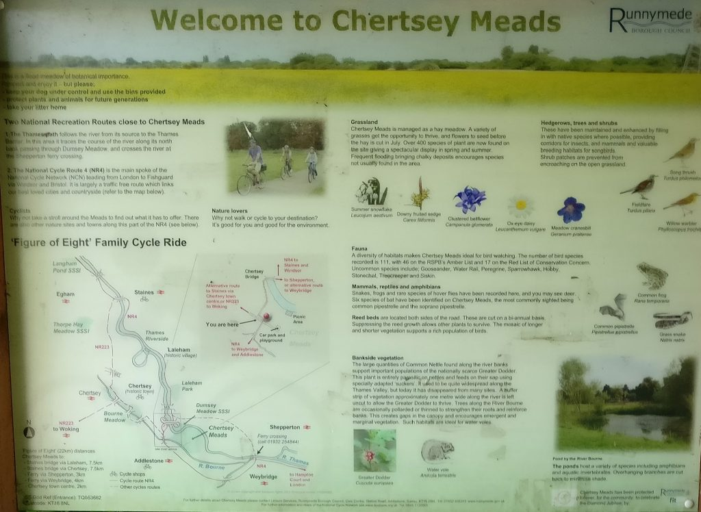 Chertsey Meads noticeboard
